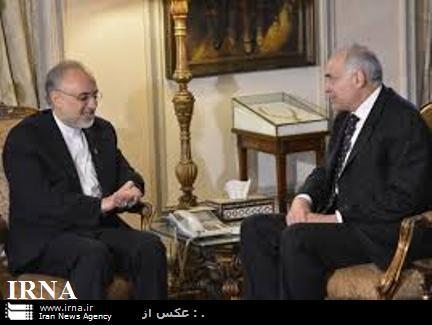 Iran-Egypt FMs Discuss Regional Developments