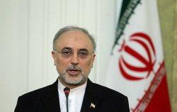 Salehi Warns Against Illusion Of Imminent Collapse Of Assad Govt 