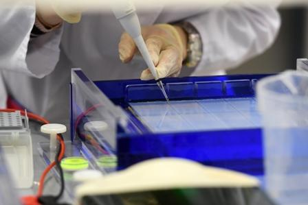 Results of Studies of 3rd Russian Vaccine Against COVID-19 Expected by Mid-December