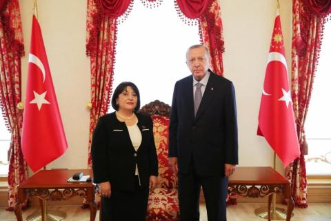 Chairperson of Azerbaijan's Parliament meets with Turkish President
