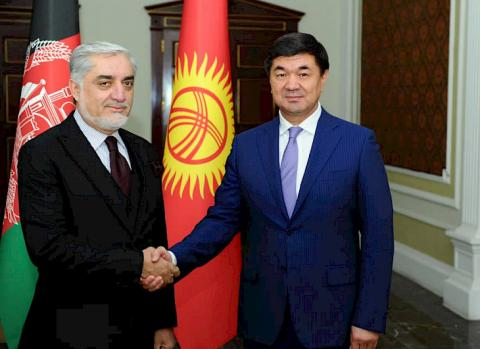 Kyrgyzstan interested in actively developing trade and economic cooperation with Afghanistan - Abylgaziyev
