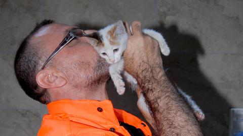 Istanbul: Road worker saves kitten with breath of life