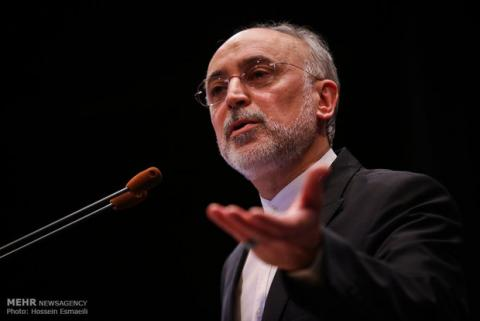 Salehi: Iran capable of resuming 20% enrichment in case of EU failure
