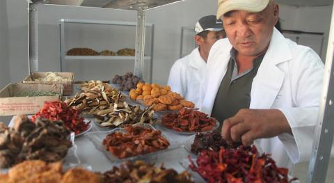 Mini-shop for processing fruits and vegetables opened in south of Kyrgyzstan