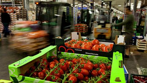 Bahrain interested in importing meat and agricultural products from Kyrgyzstan