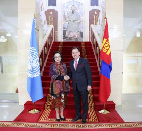 Mongolia's active partnership with UN appreciated