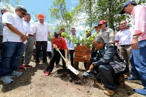 Sabah Oil Palm Planters Have Not Ignored Forest Conservation -- Minister