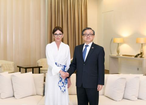 First Vice-President of Azerbaıjan Mehriban Aliyeva met with UN Under-Secretary-General Liu Zhenmin