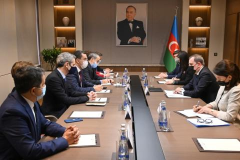 Azerbaijan's FM meets with members of French National Assembly delegation