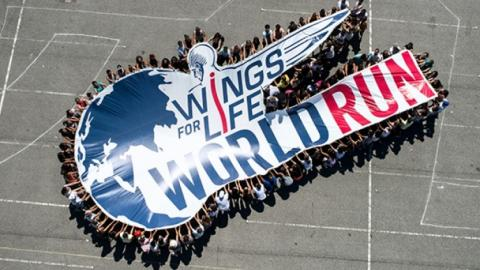 Participants of Wings for Life World Run collect 3 million euros for charity