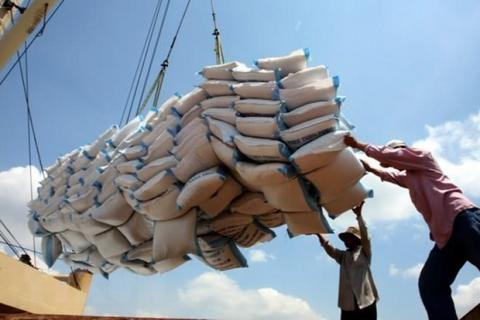 Vietnamese PM orders suspension of signing rice-exporting contracts