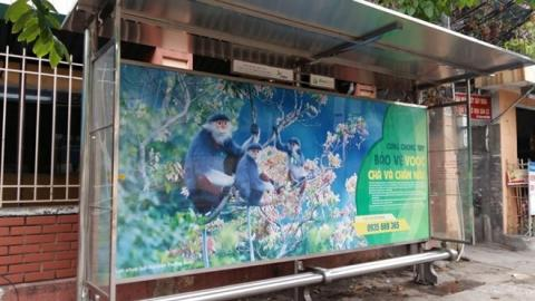 Vietnam city uses solar power charging for bus commuter, tourists