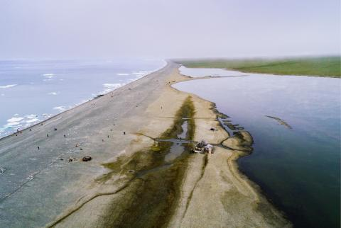 Military ecologists begin cleaning Wrangel Island