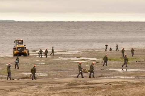 Great Norilsk Expedition finds no pollution in north of Taimyr Peninsula