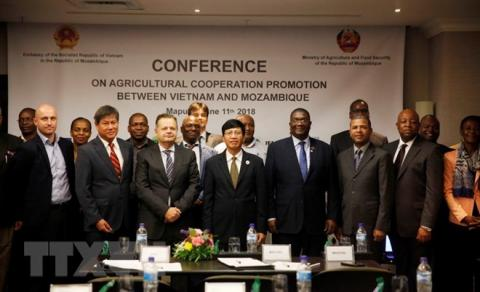 Vietnam, Mozambique further foster agricultural cooperation