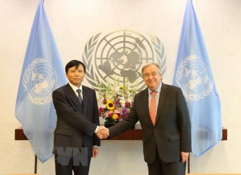 Vietnam active at United Nations' forums