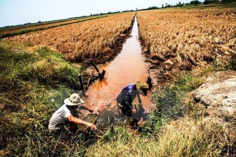 Vietnam deems climate change adaptation mandatory for survival: Official