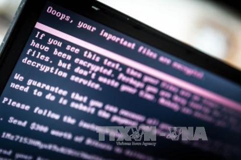 Nearly 600 cyber attacks in November