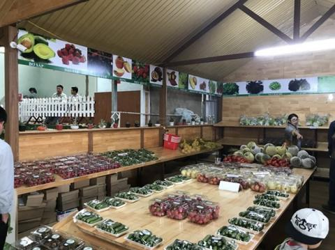 Lam Dong province of Vietnam develops agritourism