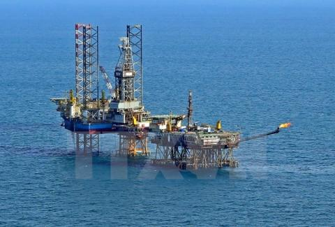 FDI lays foundation for acceleration of Vietnamese oil and gas sector