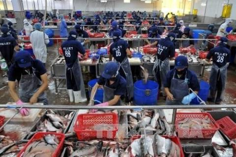 Vietnam's seafood exports face barriers