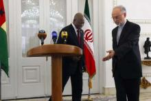 Iranian Foreign Minister Meets His Guinea-Bissaus Counterpart 