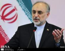 Salehi: Iran to promote its int&#039;l position through NAM  
